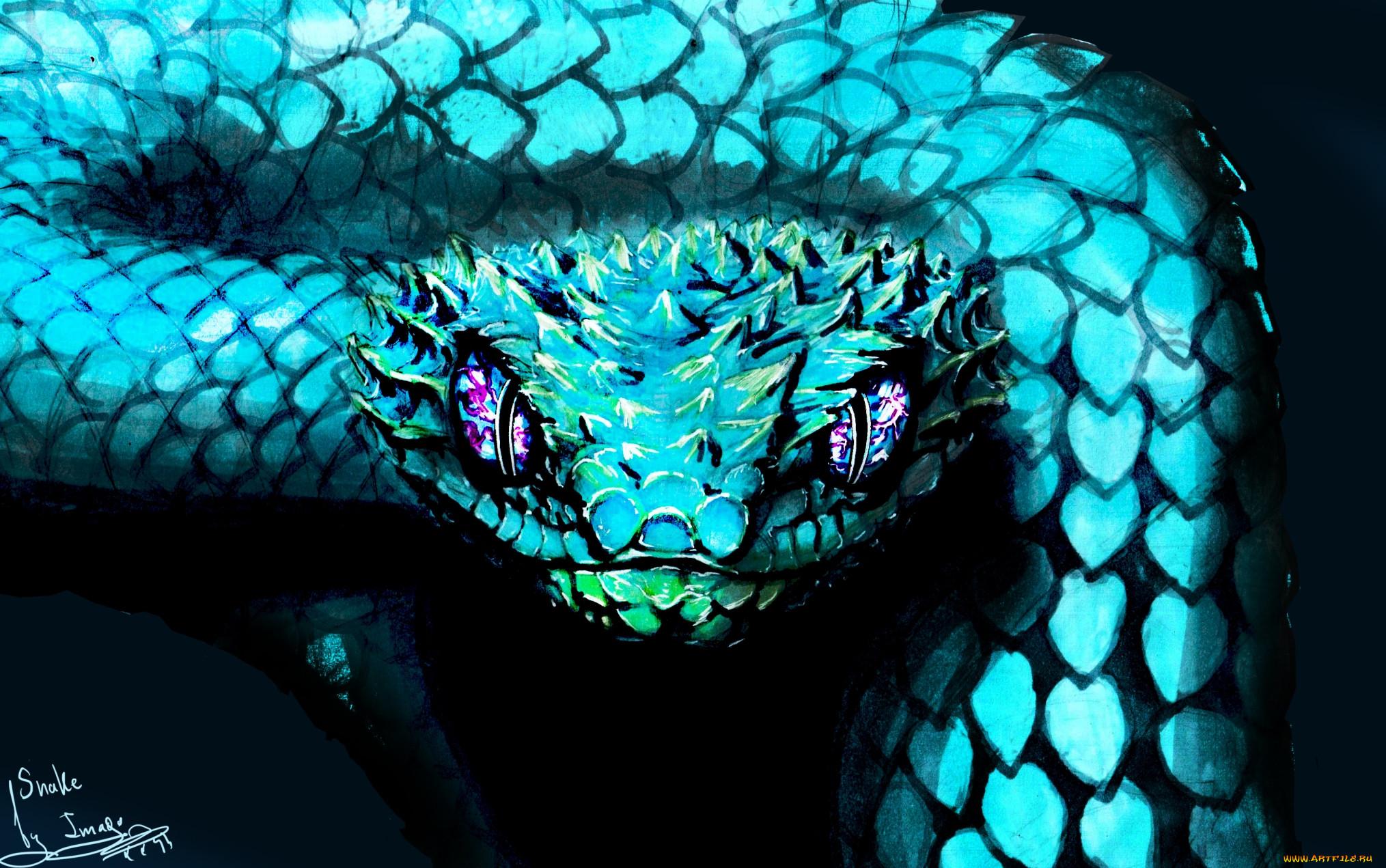 меня садовом змея картинка для стима покупателей, ценящих